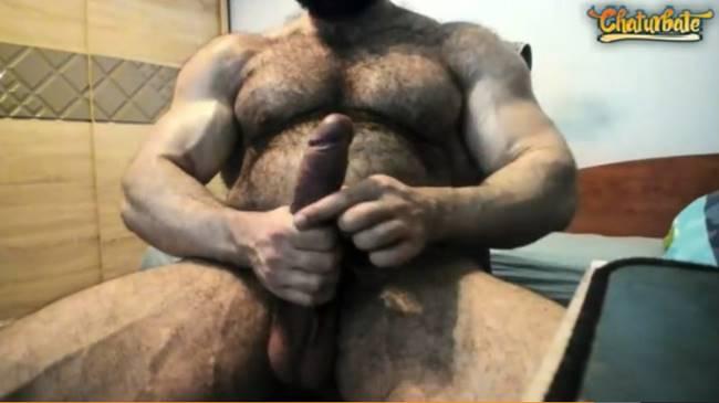 Urso parrudão batendo punheta no Chaturbate